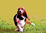 Funny Dog Mixed Media - Lovely Basset by Dorrie Pelzer