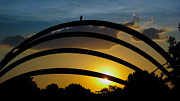 Municipal Originals - Lovely Sunset by Sergio Aguayo