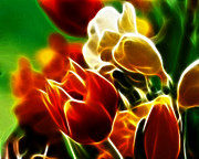 Colorful Tulips Prints - Lovely Tulips Print by Pamela Johnson