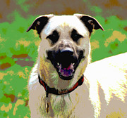 Puppies Digital Art Prints - Loves to Smile Print by Dorrie Pelzer