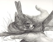 Nest Drawings - Loving Hands by Lisa Bell