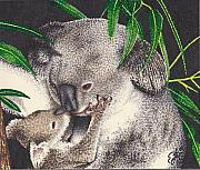 Koala Drawings Posters - Loving Kiss Poster by Scarlett Royal