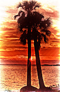 Sunset Prints Posters - Loving Palms-The Journey Poster by Janie Johnson