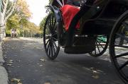Central Park Prints - Low Angle View Of Horse-drawn Carriages Print by Stacy Gold
