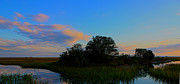 Low Country Prints - Low Country Marsh Vista at Sunrise Print by Mike Savlen