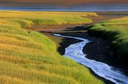 Peaceful Scenery Prints - Low Tide At Sunset, Minas Basin, Kings Print by Ron Watts