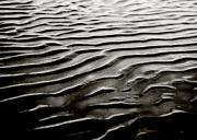 Low Tide  Print by Charmian Vistaunet