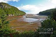 Bay Of Fundy Prints - Low Tide In Bay Of Fundy Print by Ted Kinsman