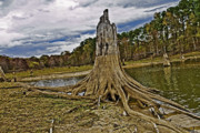 North Louisiana Prints - Low Water Print by Scott Pellegrin