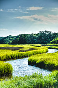 Marsh Photo Acrylic Prints - Lowcountry Creek Acrylic Print by Drew Castelhano