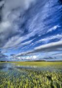 South Carolina Digital Art Originals - Lowcountry Flood Tide and Clouds by Dustin K Ryan