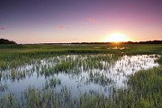 Flood Framed Prints - Lowcountry Flood Tide Sunset Framed Print by Dustin K Ryan