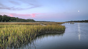 Lowcountry Metal Prints - Lowcountry Marsh Grass on the Bohicket Metal Print by Dustin K Ryan