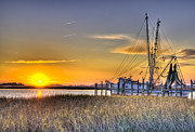 Florida Seafood Prints - Lowcountry Sunset Print by Drew Castelhano