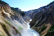 Dany Lison Metal Prints - Lower falls - Yellowstone Metal Print by Dany Lison