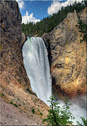 Yellowstone Posters - Lower Falls, Grand Canyon Of Yellowstone Poster by Jill Clardy