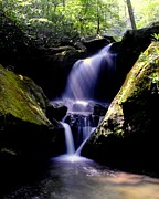 Beautiful Creek Posters - Lower Grotto Falls Poster by Robert Harmon