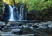Canoe Waterfall Posters - Lower Johnson Falls Poster by Larry Ricker