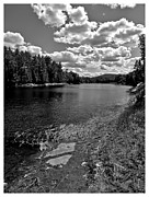 White River Pyrography Posters - Lower Madawaska River Poster by Yves Pelletier