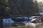Swallow Falls State Park Art - Lower Swallow Falls by William Kuta