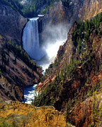 Yellowstone Park Scene Prints - Lower Yellowstone Falls Print by Alan W Cole