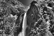 Lower Yosemite Falls Bw Print by Bruce Friedman
