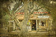 Oak Tree Framed Prints - Luckenbach Aged Framed Print by Scott Norris