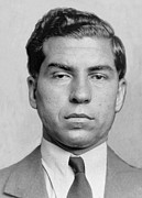 Prohibition Art - Lucky Luciano 1896-1962 Was Imprisoned by Everett