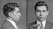 Lansky Posters - Lucky Luciano Poster by Bill Cannon