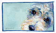 Schnauzer Puppy Framed Prints - Lucy Framed Print by Kimberly Santini