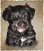 Tom Schmidt Acrylic Prints - Lucy Acrylic Print by Tom Schmidt