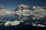 Mountain Photos - Luigi Peak Wiencke Island Antarctic by Colin Monteath