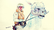Star Wars Drawings Framed Prints - Luke Skywalker on Tauntaun Framed Print by Burcu Alisan