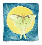 Monoprint Framed Prints - Luna Moon I Framed Print by Betsy Gray