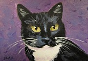 Tuxedo Cat Painting Framed Prints - Luna with Purple Framed Print by Kaia Thomas