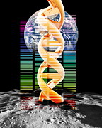 Insurance Plan Prints - Lunar Dna Library Print by Victor Habbick Visions