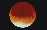 Eclipse Framed Prints - Lunar Eclipse Framed Print by Purestock