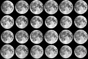 Twenty-four Framed Prints - Lunar Libration Sequence Framed Print by Laurent Laveder