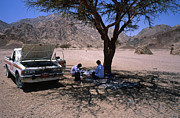 Sinai Prints - Lunchtime in the Desert of Sinai Print by Heiko Koehrer-Wagner