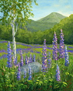 Canvas On Board Metal Prints - LUPINE at SUGAR HILL Metal Print by Elaine Farmer