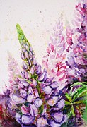 Best Gift Framed Prints - Lupins Framed Print by Zaira Dzhaubaeva