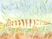 Muskellunge Posters - Lurking Tiger Poster by David Crowell