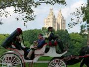Anna  Duyunova - Luscious Ride