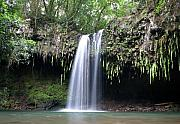 North Shore Prints - Lush tropical waterfall Twin Falls on Maui Hawaii Print by Pierre Leclerc