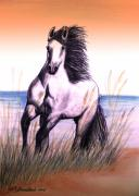 White Horse Pastels Originals - Lusitano Thunder By The Sea by Patricia L Davidson