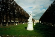 Luxembourg Gardens Prints - Luxembourg Gardens Print by Randy Edwards