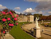 Luxembourg Gardens Prints - Luxembourg Palace Print by Mick Burkey