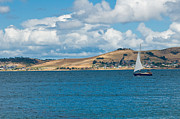 Reflection Harvest Photo Posters - Luxury yacht sails in blue waters along a summer coast line Poster by Ulrich Schade