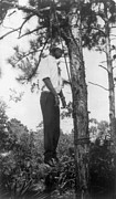 Lynching Framed Prints - Lynched African American Man Hanging Framed Print by Everett