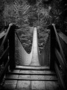 North Vancouver Metal Prints - Lynn Canyon Bridge Metal Print by Tom Buchanan